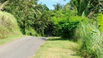Mit dem Fahrrad auf Bali unterwegs
