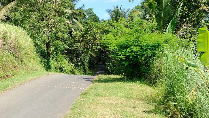 Nebenstrasse im Hinterland Balis