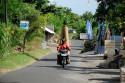 Roller in Amed, Bali