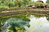 Quellteich des Pura Tirta Empul, Bali