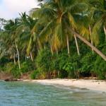 Palmengesäumter Strand von Karimunjawa