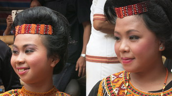 Frauen in Tracht, Tana Toraja, Sulawesi