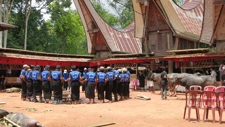 Beerdigungszeremonie der Tana Toraja, Sulawesi