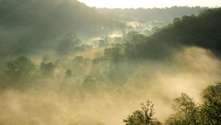 Blick über den Taman Nasional Bali Barat